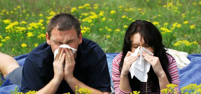 Ο Αλλεργιολόγος είναι ο ειδικός γιατρός για τις ανοιξιάτικες αλλεργίες